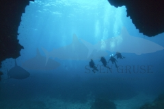 Divers in front of a cave